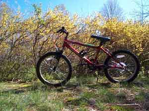 A bicycle; Actual size=300 pixels wide